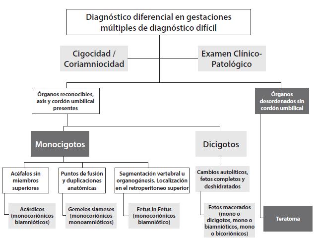 Enfoque de las gestaciones múltiples de diagnóstico difícil durante ...