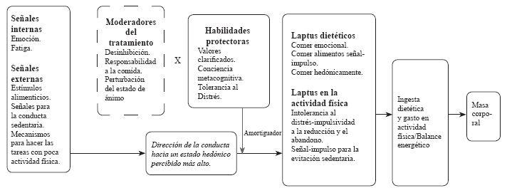 obesidad tipo 1 fases perdida de peso